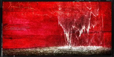 Wasser der Red Cedar I   Panorama
